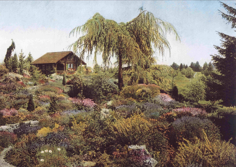 Meyrin autrefois commune de meyrin for Boulevard du jardin botanique 20