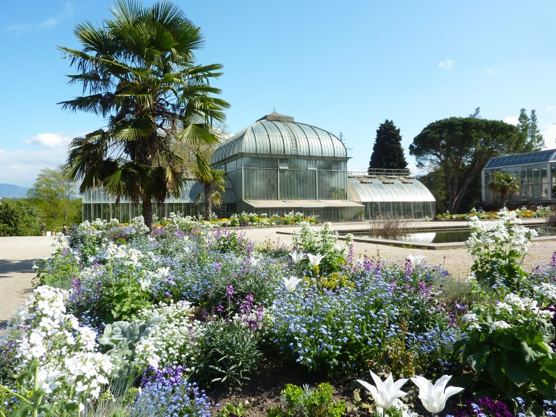 visite du jardin botanique de genve - Jardin Botanique Geneve